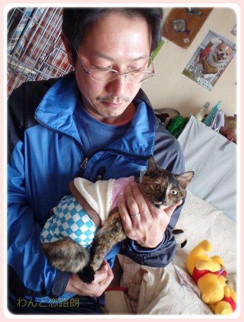 f:id:yasukazu01:20170219163427j:image
