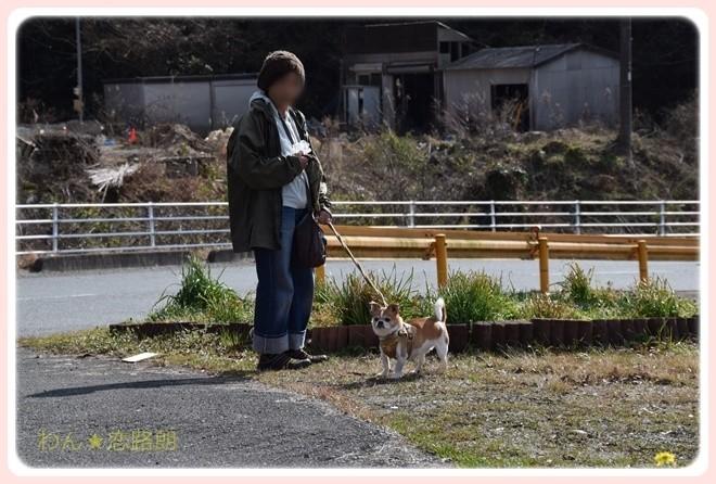 f:id:yasukazu01:20170224204913j:image