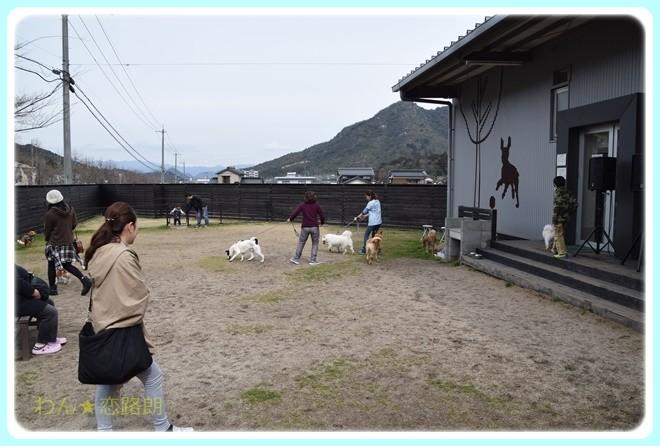 f:id:yasukazu01:20170305105858j:image