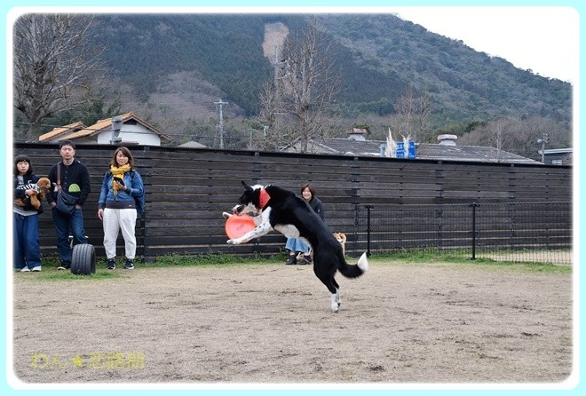 f:id:yasukazu01:20170305141826j:image
