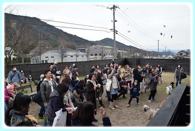 f:id:yasukazu01:20170305143615j:image