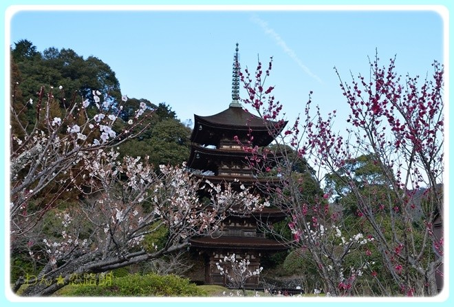 f:id:yasukazu01:20170311151748j:image