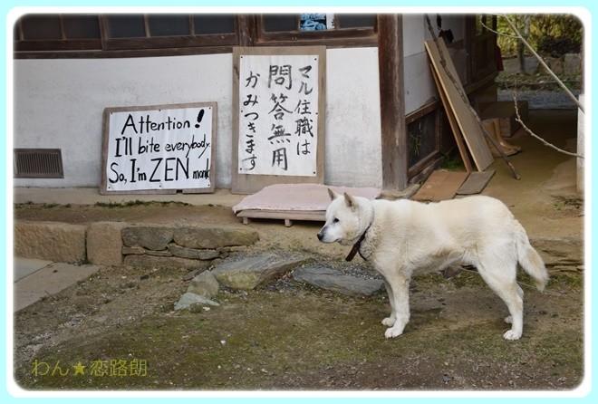 f:id:yasukazu01:20170311152702j:image