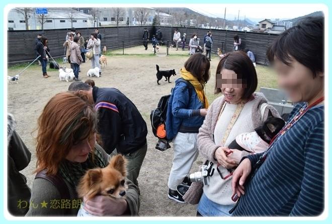 f:id:yasukazu01:20170318180413j:image