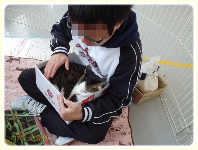 f:id:yasukazu01:20170326220926j:image