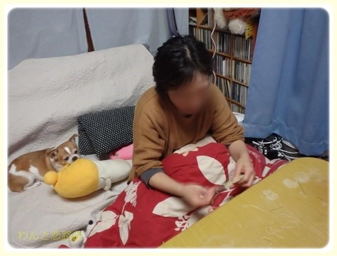 f:id:yasukazu01:20170330165615j:image