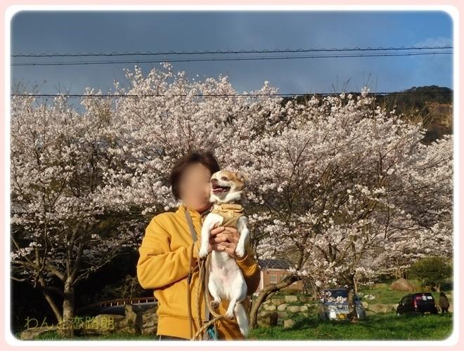 f:id:yasukazu01:20170409100728j:plain