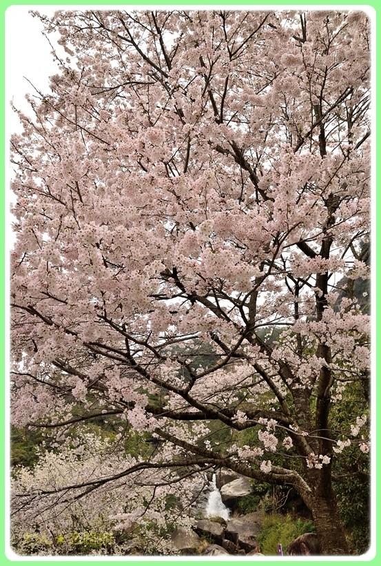 f:id:yasukazu01:20170412170540j:plain