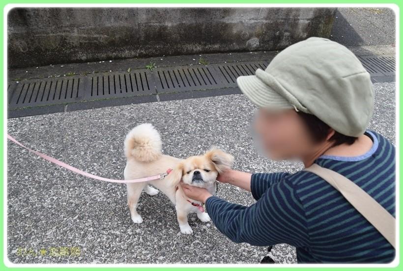 f:id:yasukazu01:20170414150026j:plain