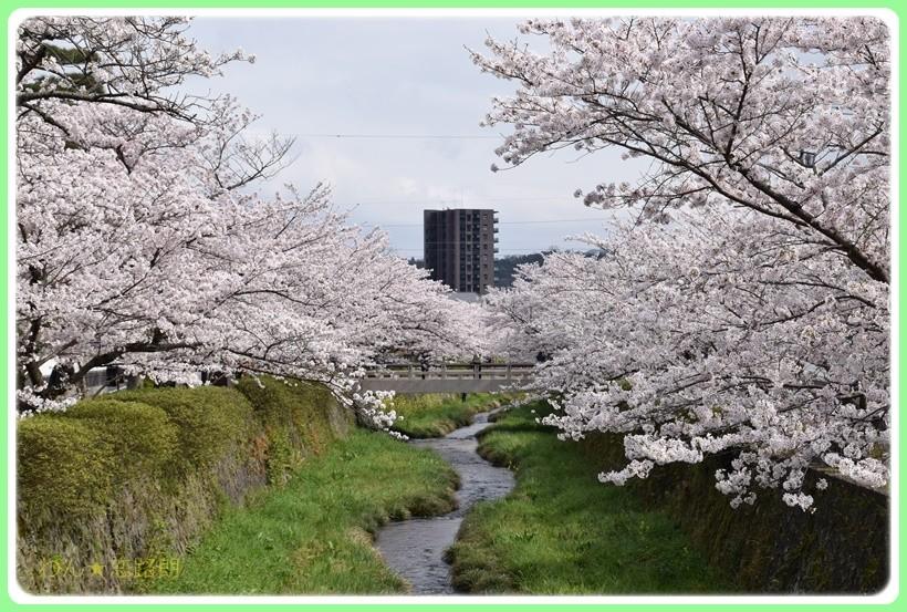 f:id:yasukazu01:20170414150234j:plain