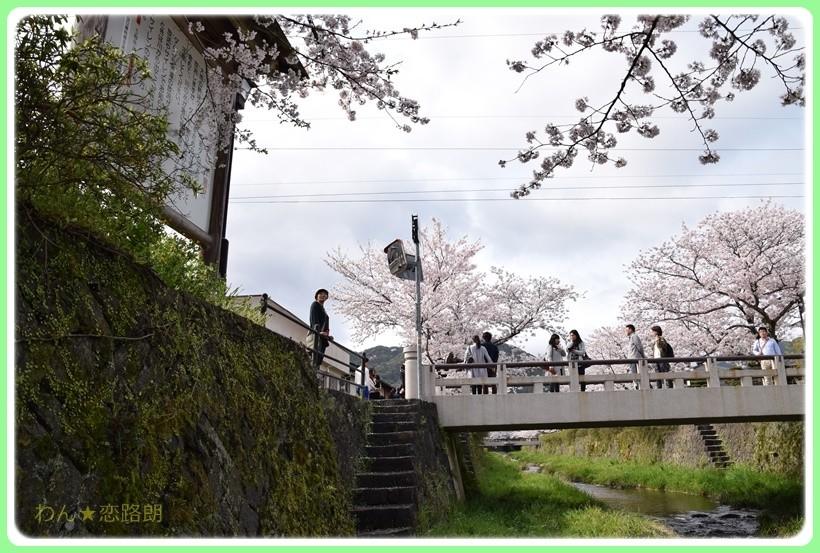 f:id:yasukazu01:20170414150558j:plain