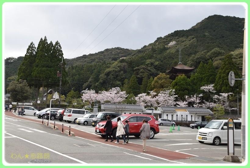 f:id:yasukazu01:20170416162433j:plain
