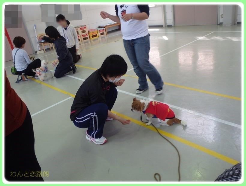 f:id:yasukazu01:20170419192835j:plain
