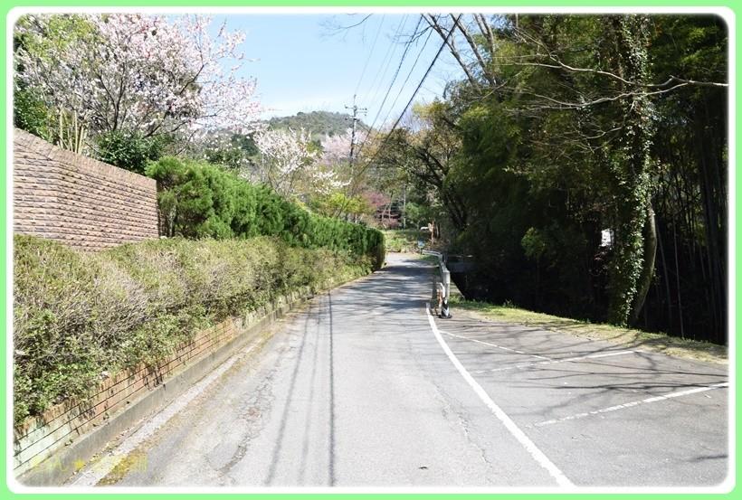 f:id:yasukazu01:20170422130826j:plain