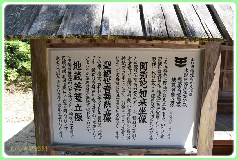 f:id:yasukazu01:20170424152224j:plain