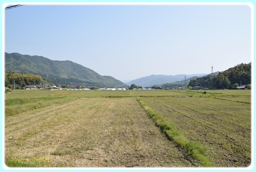 f:id:yasukazu01:20170501082922j:plain