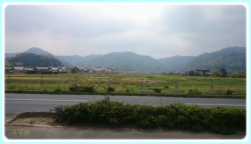 f:id:yasukazu01:20170502114530j:plain