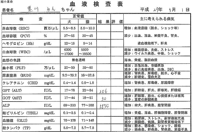 f:id:yasukazu01:20170502115008j:plain