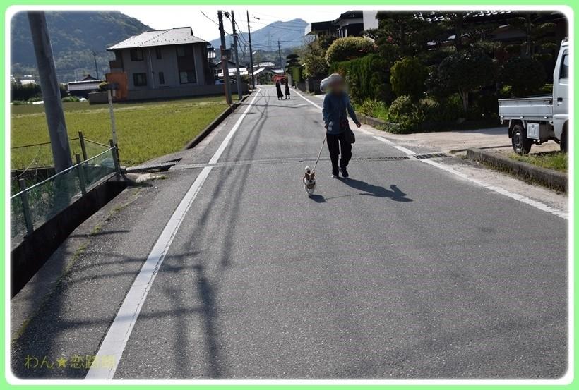 f:id:yasukazu01:20170513203047j:plain
