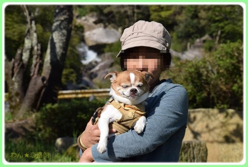 f:id:yasukazu01:20170513203400j:plain