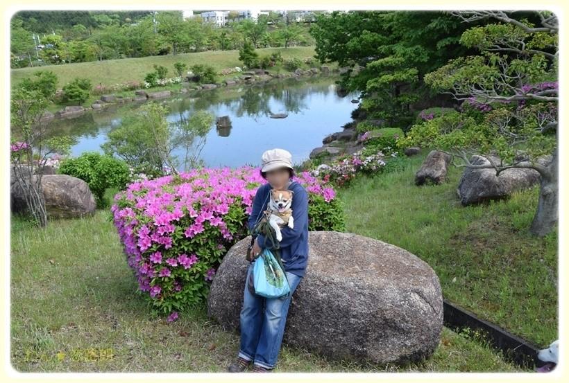 f:id:yasukazu01:20170518144333j:plain