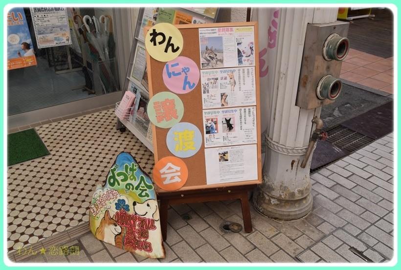 f:id:yasukazu01:20170520154317j:plain