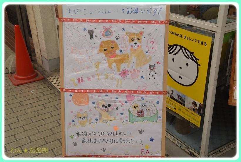 f:id:yasukazu01:20170520154620j:plain