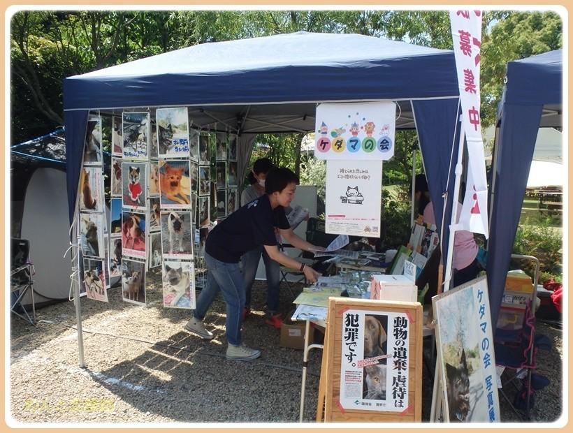 f:id:yasukazu01:20170528215918j:plain