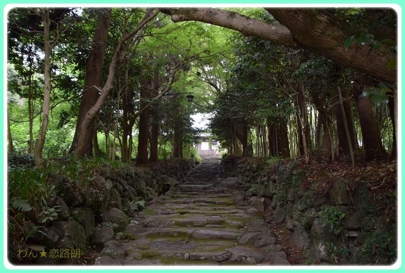 f:id:yasukazu01:20170615171258j:plain
