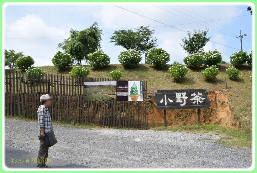 f:id:yasukazu01:20170623200202j:plain
