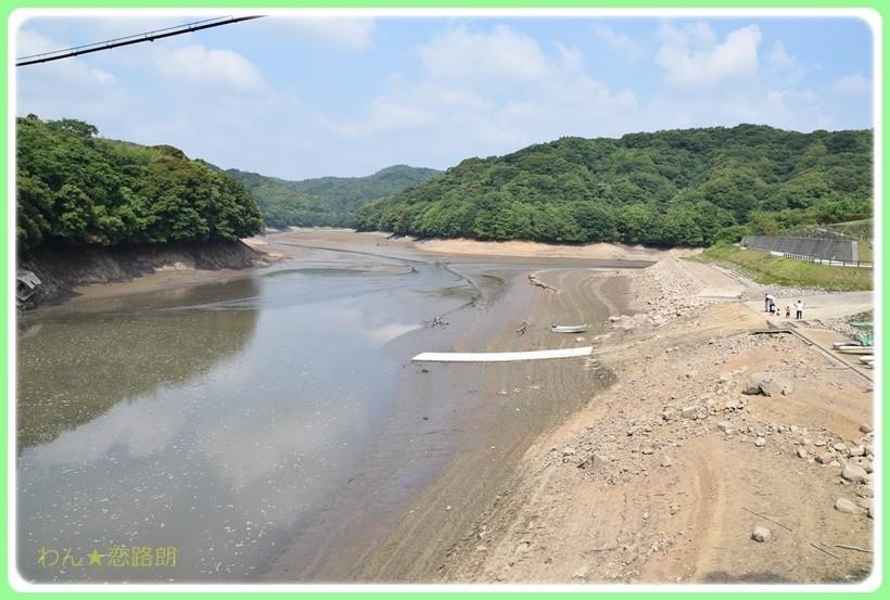 f:id:yasukazu01:20170623201021j:plain