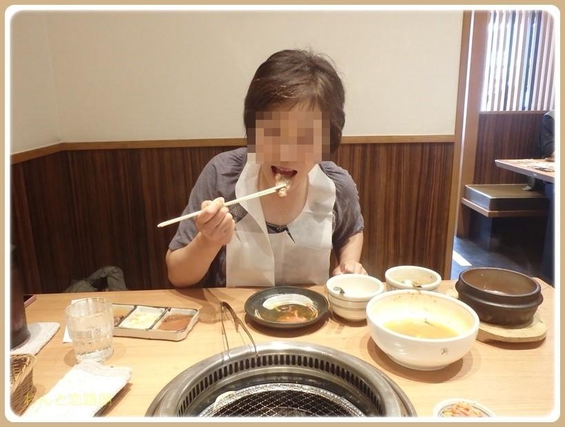 f:id:yasukazu01:20170625214733j:plain