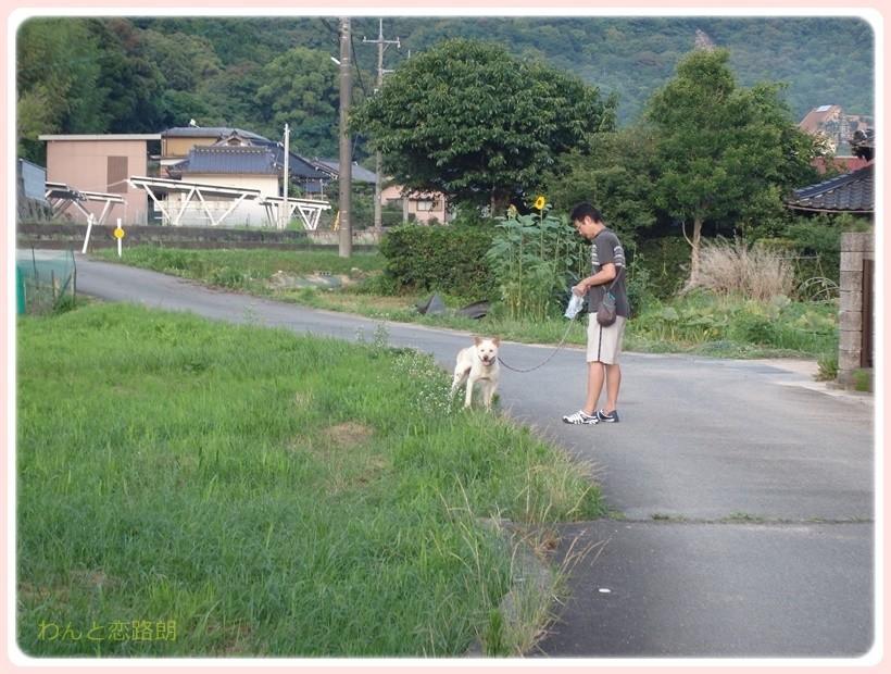 f:id:yasukazu01:20170712204612j:plain