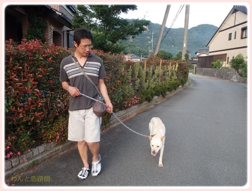 f:id:yasukazu01:20170712205112j:plain