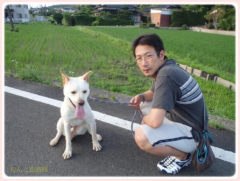 f:id:yasukazu01:20170712205646j:plain
