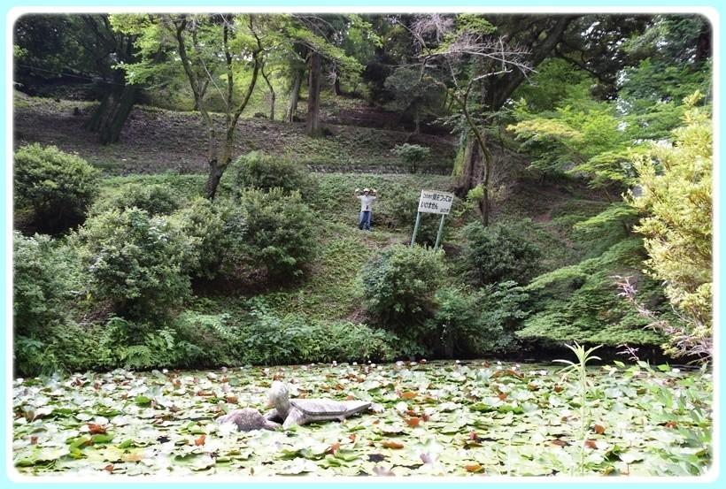 f:id:yasukazu01:20170729221545j:plain
