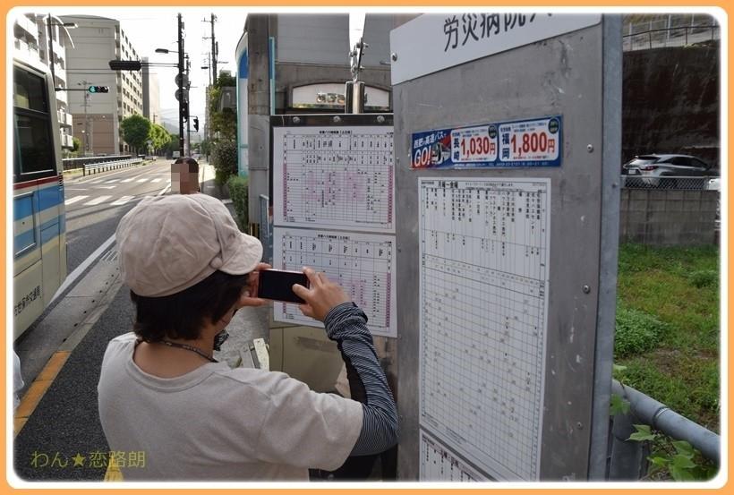 f:id:yasukazu01:20170815112550j:plain