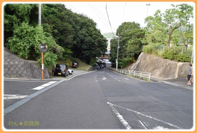 f:id:yasukazu01:20170815112937j:plain