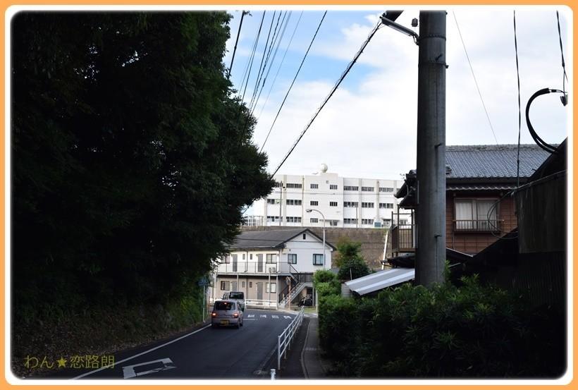 f:id:yasukazu01:20170815114446j:plain