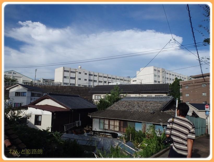 f:id:yasukazu01:20170815115337j:plain