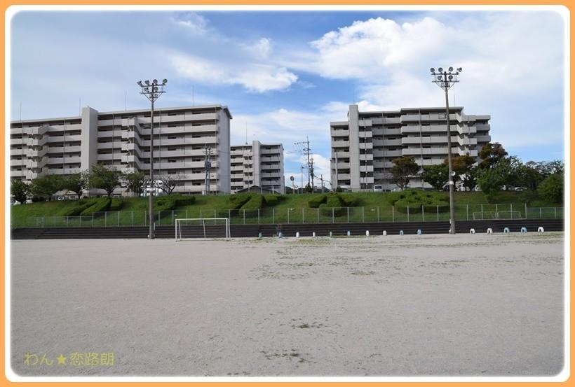 f:id:yasukazu01:20170816131018j:plain