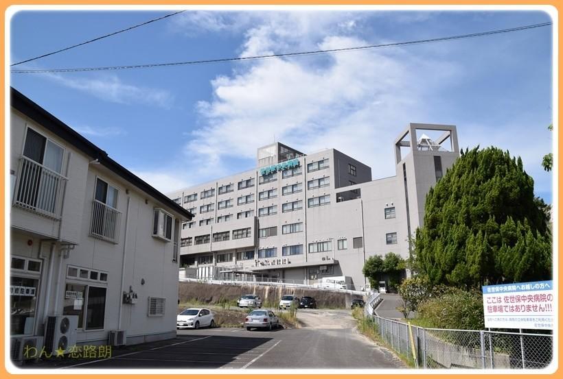 f:id:yasukazu01:20170816131740j:plain