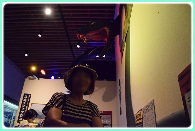 f:id:yasukazu01:20170828201121j:plain