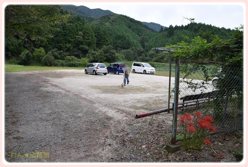 f:id:yasukazu01:20170925191332j:plain