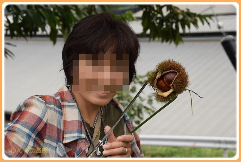 f:id:yasukazu01:20170928175355j:plain