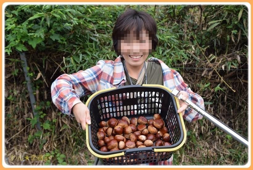f:id:yasukazu01:20170928175435j:plain