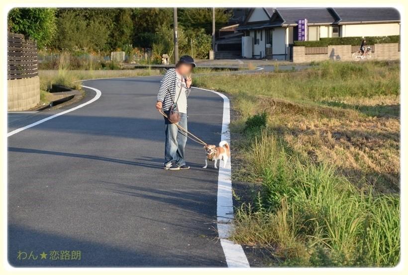 f:id:yasukazu01:20171009185857j:plain