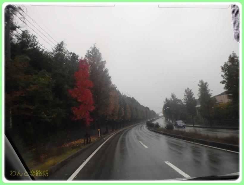 f:id:yasukazu01:20171029201352j:plain