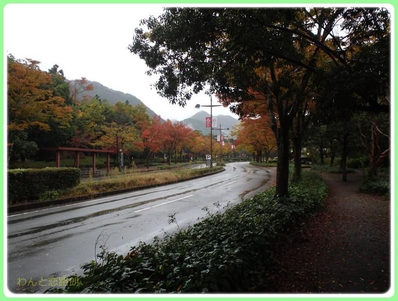 f:id:yasukazu01:20171029202031j:plain