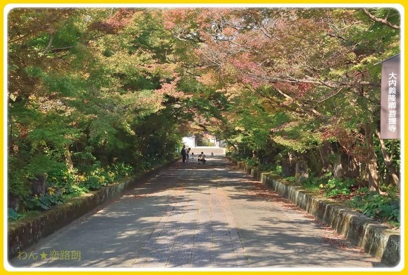 f:id:yasukazu01:20171106174841j:plain
